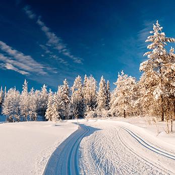 Finland 2018 - Tomor Roys