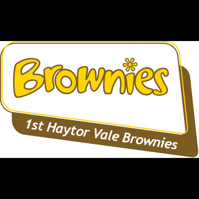 1st Haytor Vale Brownies