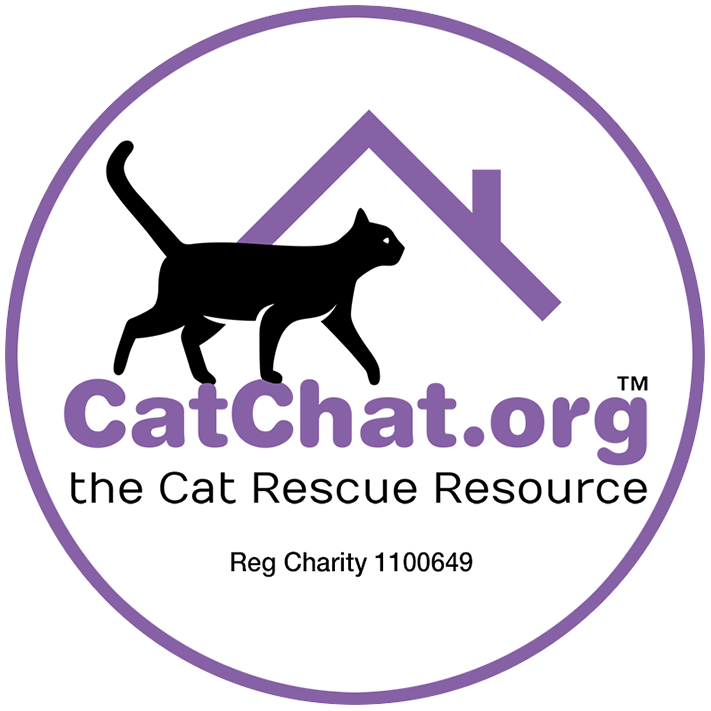 Cat Chat - the Cat Rescue Resource