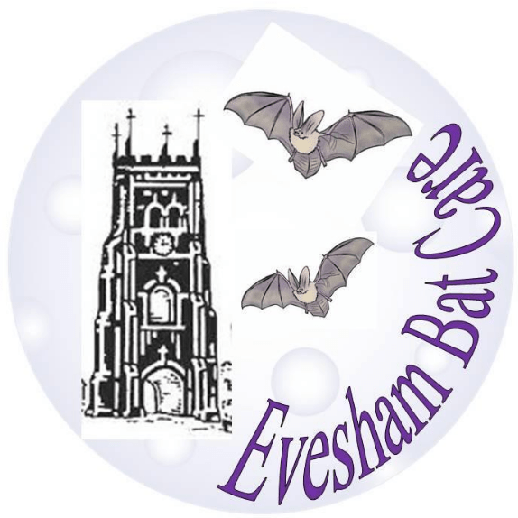 Evesham Bat Care