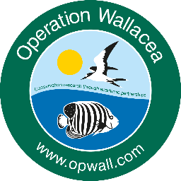 Operation Wallacea Dominica 2019 - Greta Butcher