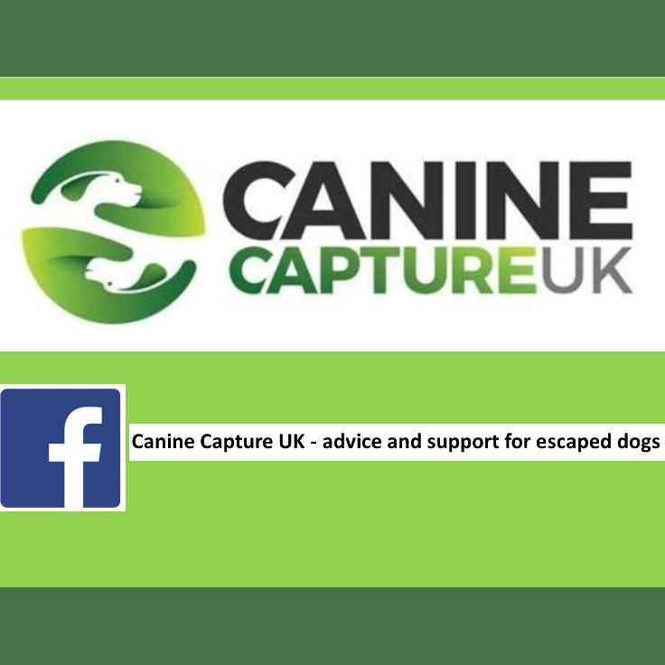 canine capture uk
