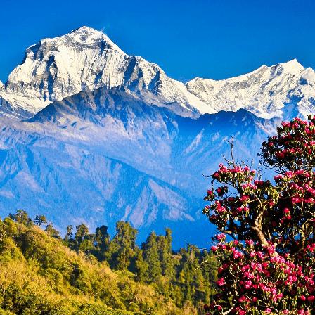 True Adventure Nepal  2018 - Julian de Paiva