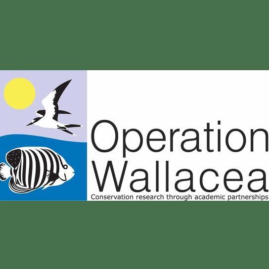 Operation Wallacea Mexico 2018 - Matthew McCann