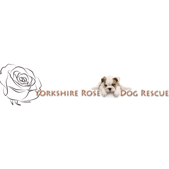 Yorkshire Rose Dog Rescue