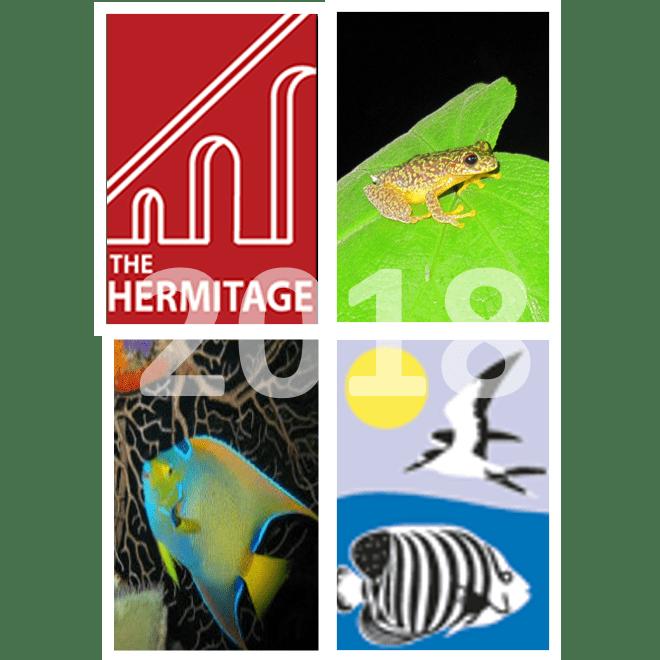 Herma to Honduras 2014 - The Hermitage Academy