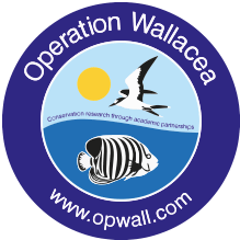 Operation Wallacea Dominica 2019 - Olivia-Mae O'Reilly