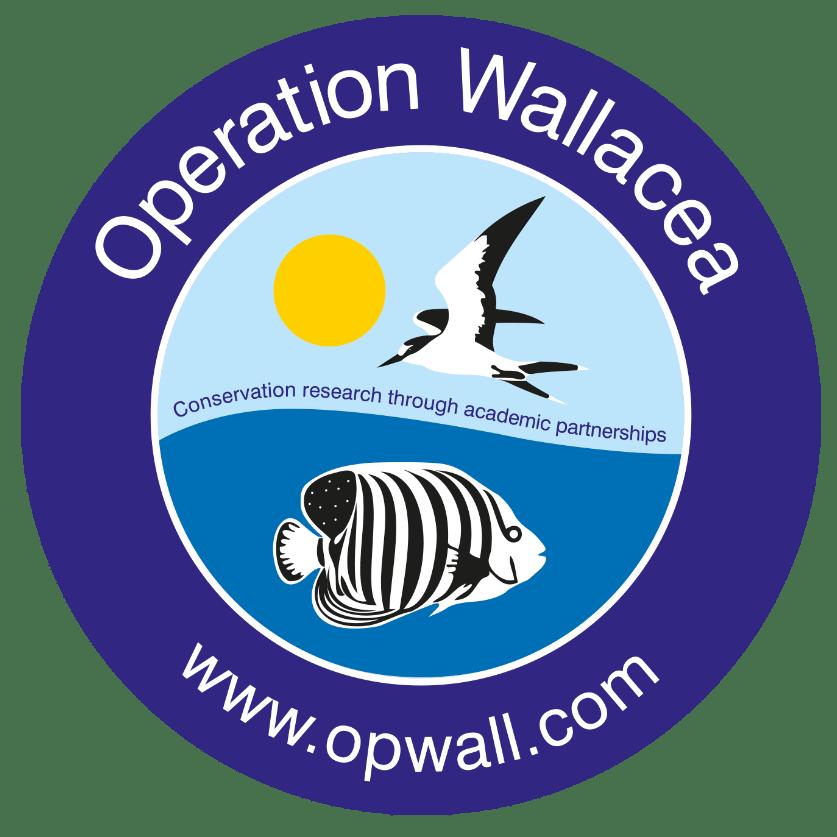 Operation Wallacea 2019 - Lauren Decent