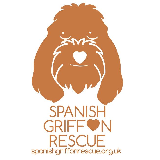 Spanish Griffon Rescue