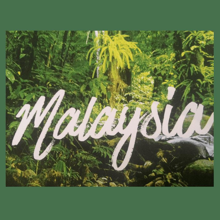 World Challenge Malaysia 2018 - Caitlin Hattrell
