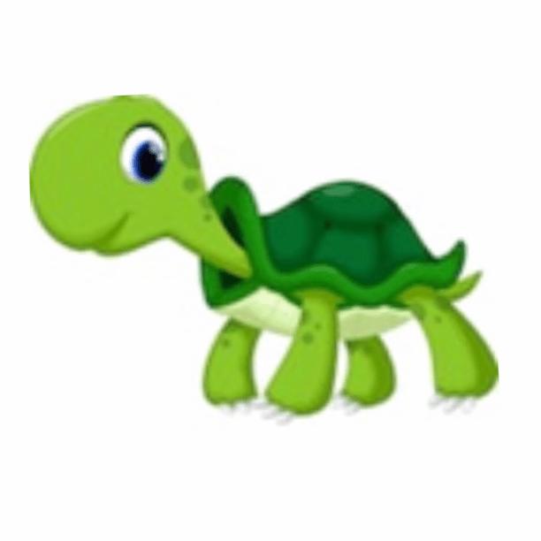 Portsmouth Tortoise Rescue