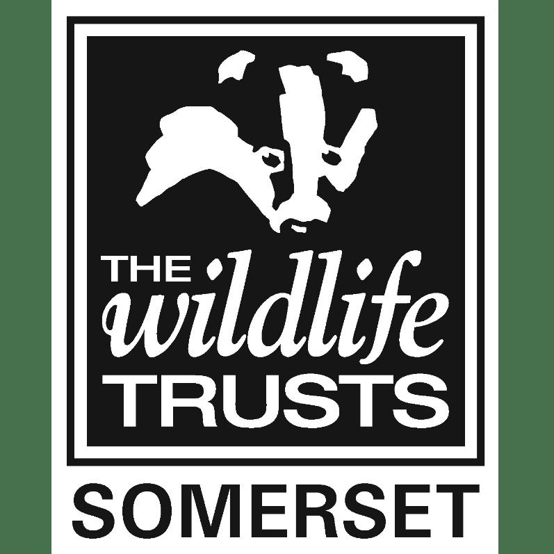 Somerset Wildlife Trust cause logo