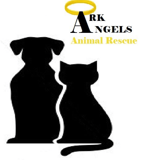 Ark Angels Animal Rescue - Chester