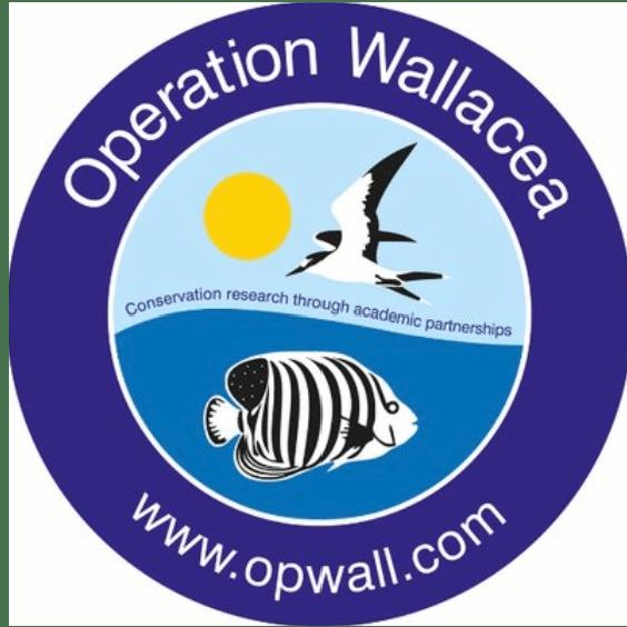 Operation Wallacea Mexico 2020 - Georgina Tugwell