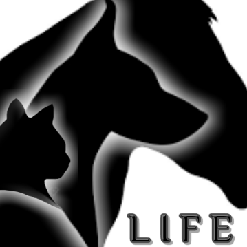 LIFE - Lucy Irvine Foundation Europe