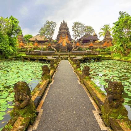 Indonesia 2020 - Olivia Hadfield