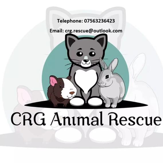 CRG Animal Rescue