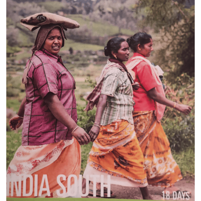 Outlook Expeditions, India South 2019 - Madelaine Hodgson
