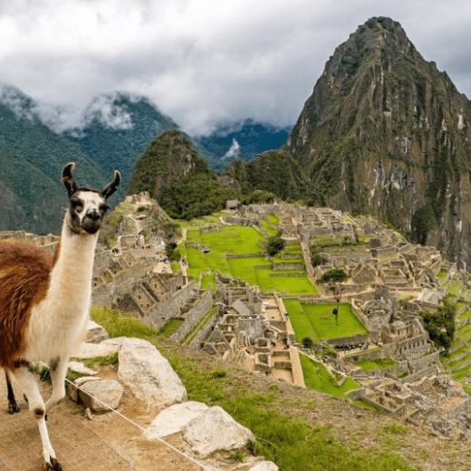 Peru 2020 - Jessica Bishop