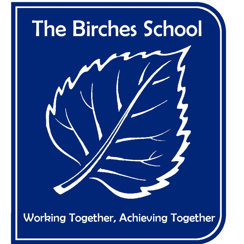 The Birches Specialist Support School - Manchester