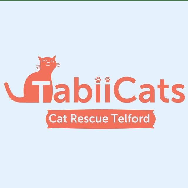 TabiiCats Cat Rescue Telford