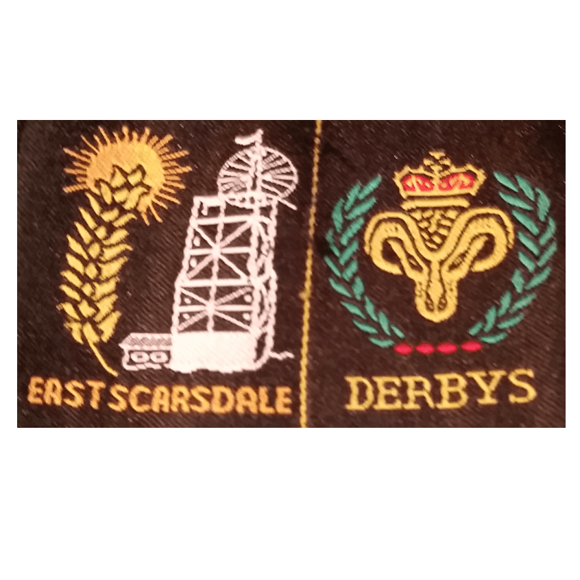 East Scarsdale District Scouts WSJ 2019