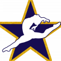 NCAAC Gymnastics
