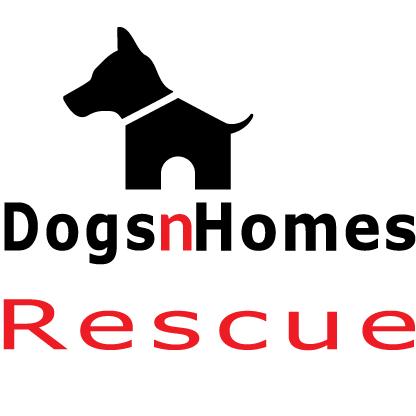 DogsnHomes Rescue