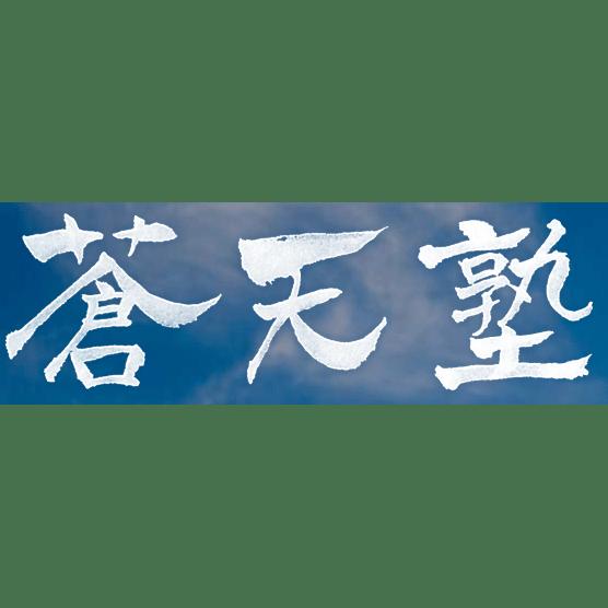 Sotenjuku Aikido