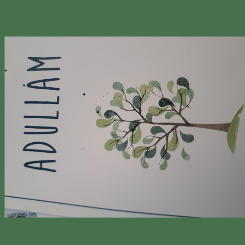 Adullam program