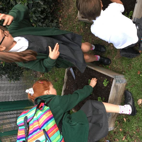All Saints Inter-Church Academy - Gardening Club Resources