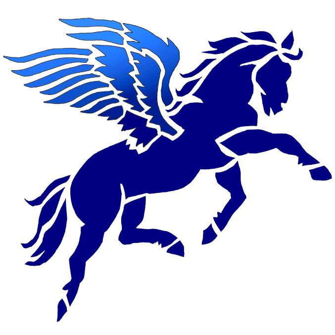Pegasus Gymnastics Club