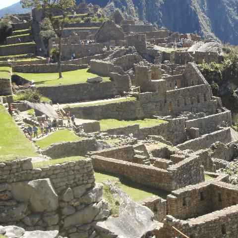 Peru 2020 - Findlay Hampshaw