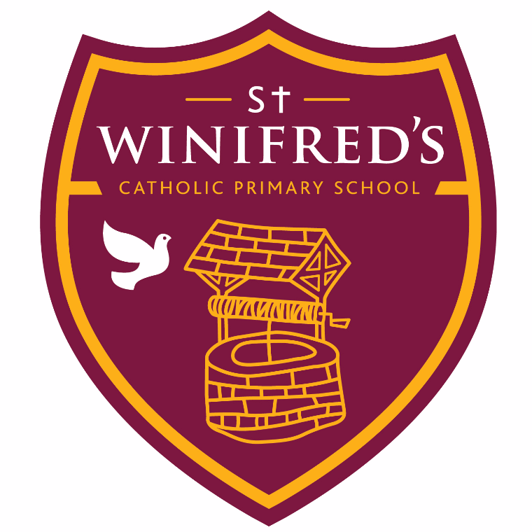 The Friends of St Winifred's Schools - Lee