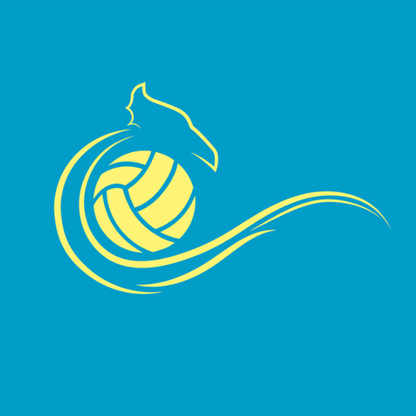 Volleyball North Wales