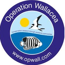 Operation Wallacea Indonesia 2020 - Hannah Somerville