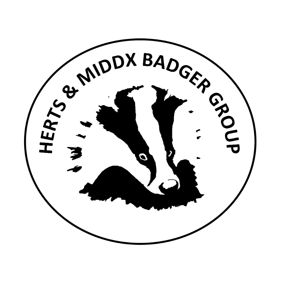 Herts and Middlesex Badger Group