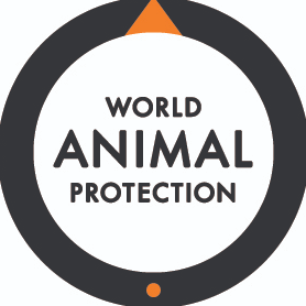 London Marathon 2020 for World Animal Protection - Frances Ulph