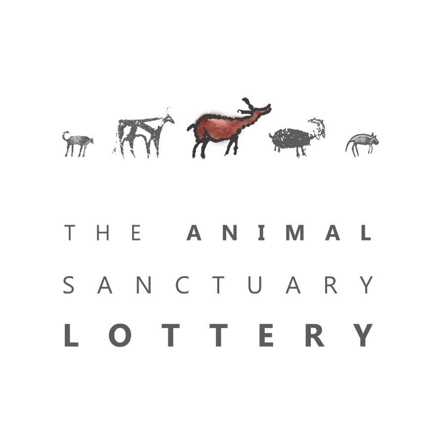 ANIMAL SANCTUARY LOTTERY