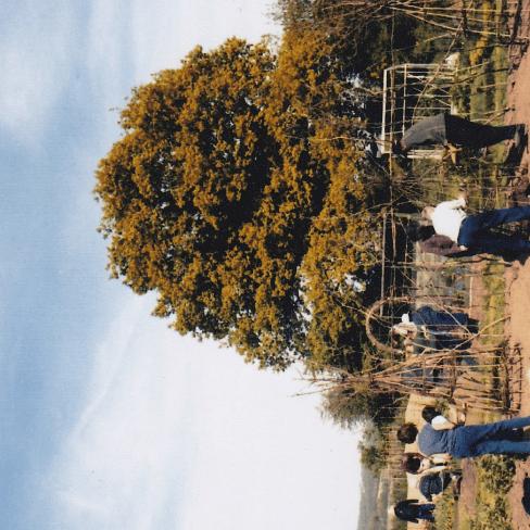 Bexhill neighbourhood Gardeners Scheme