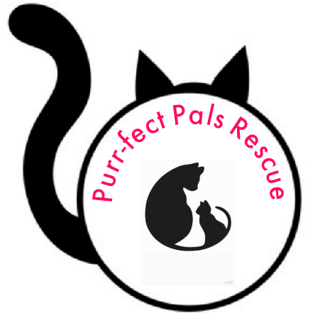 Purr-fect Pals Rescue