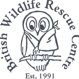 The British Wildlife Rescue Centre