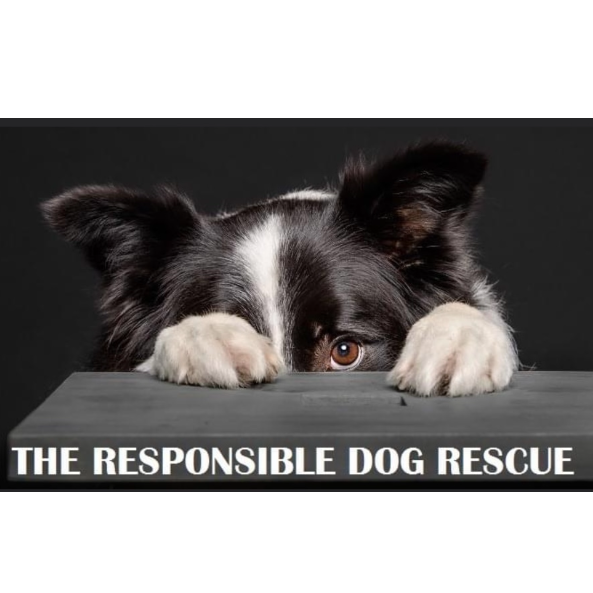The Responsible Dog Rescue