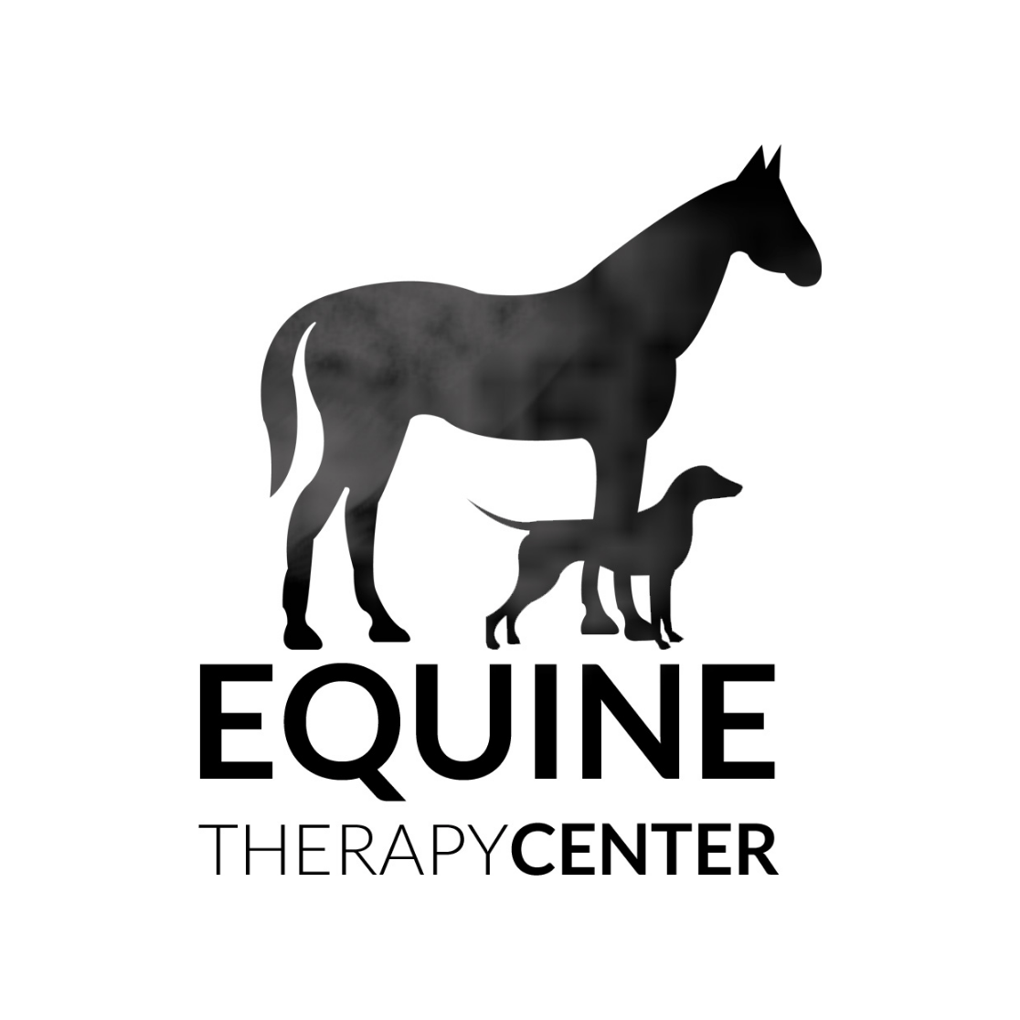 Equine Therapy Center