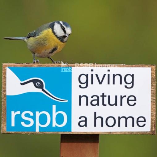 RSPB Tonbridge Local Group
