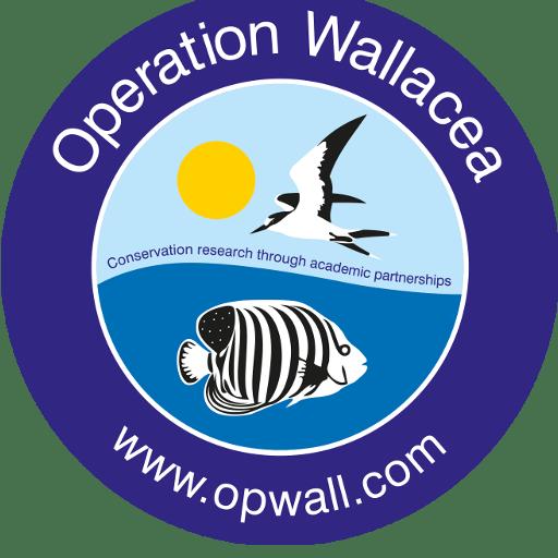 Operation Wallacea Borneo 2021 - Alice Pearson