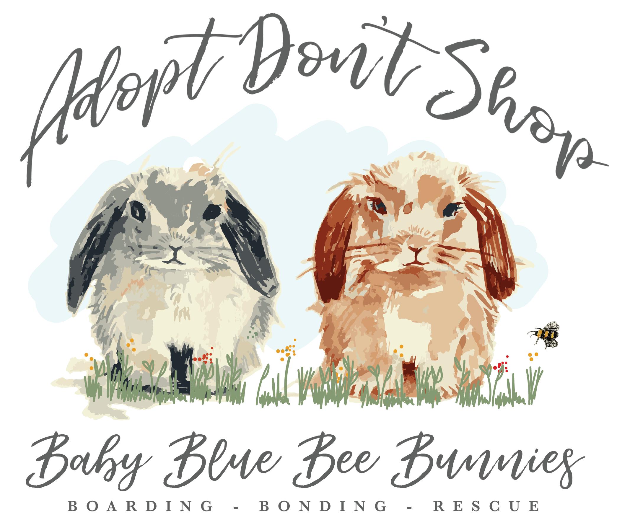 Baby Blue Bee Bunnies