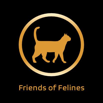 Friends Of Felines