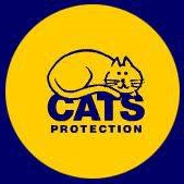 Stafford & District Cats Protection Branch