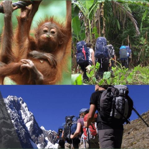 Borneo 2021 - Matthew Gathern